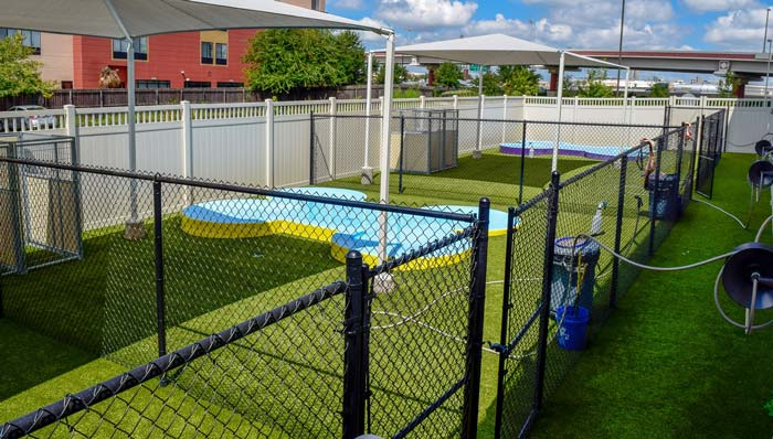 pet suites fencing